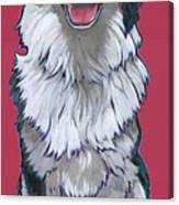 Australian Shepherd Canvas Print