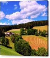 Austrian Rural Forest Vista Canvas Print
