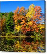 Autumn - Fall Color Canvas Print