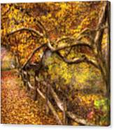 Autumn - Landscape - Country Road Side Canvas Print