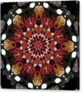 10446 Autumn 01 Kaleidoscope Canvas Print