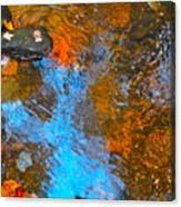 Autumn 2015 119 Canvas Print