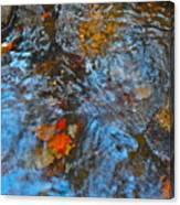 Autumn 2015 187 Canvas Print