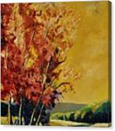 Autumn 68 Canvas Print