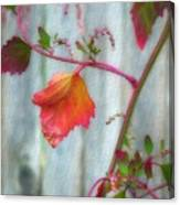 Autumn 7 Canvas Print