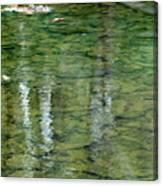 Autumn Abstract - 2 Canvas Print