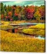 Autumn Along The River Canvas Print
