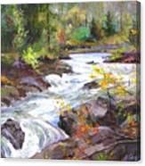 Autumn Along The Vermillion River Canvas Print