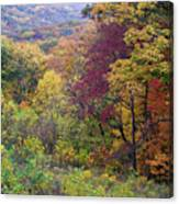 Autumn Arrives In Brown County - D010020 Canvas Print