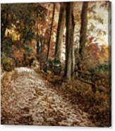 Autumn Ascending  Canvas Print
