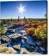 Autumn At Bear Rocks Canvas Print