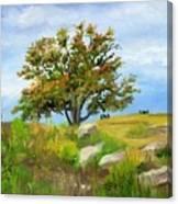 Autumn At Gettysburg Canvas Print