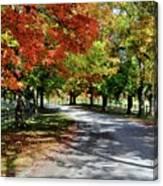 Autumn At Oatlands Lane Canvas Print