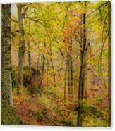Autumn At Rim Rock Canvas Print