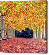 Autumn At Shinjuku Park Canvas Print