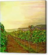 Autumn At Steenberg Canvas Print