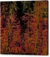 Autumn Aura Canvas Print