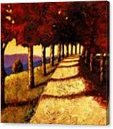 Autumn Avenue Canvas Print