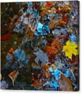 Autumn B 2015 121 Canvas Print