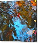Autumn B 2015 132 Canvas Print