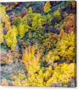 Autumn Background  Canvas Print