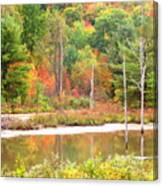 Autumn Beaver Pond Canvas Print