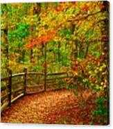 Autumn Bend - Allaire State Park Canvas Print