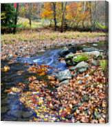 Autumn Birch River Canvas Print