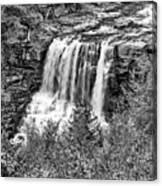Autumn Blackwater Falls Bw Canvas Print