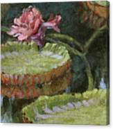 Autumn Blossom Canvas Print