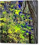 Autumn Blue  Canvas Print