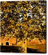 Autumn Boredom Canvas Print