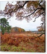 Autumn Brunch Canvas Print