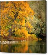 Autumn Calm Canvas Print