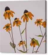 Autumn Card  Canvas Print