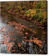 Autumn Carpet 003 Canvas Print