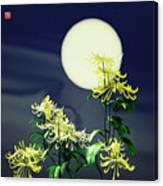 Autumn Chrysanthemums 2 Canvas Print