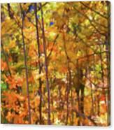 Autumn Colored Canvas Print