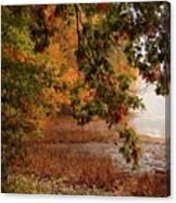 Autumn Colors 37 Canvas Print