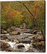 Autumn Colors On Pickle Creek 2 Canvas Print