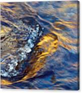 Autumn Colors River Rapids Canvas Print