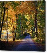 Autumn Country Lane Canvas Print