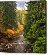 Autumn Creations Canvas Print