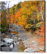 Autumn Creek 3 Canvas Print