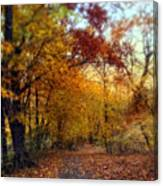 Autumn Crescendo Canvas Print