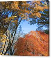 Autumn Day Canvas Print