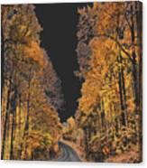 Autumn Drive 2 Canvas Print