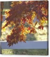 Autumn Elegance Canvas Print
