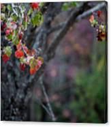 Autumn Fade Canvas Print