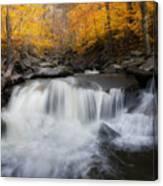 Autumn Falling Square Canvas Print